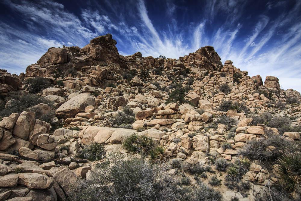 Roadtrip USA – Tag 10: Kurzwanderungen im Joshua Tree National Park