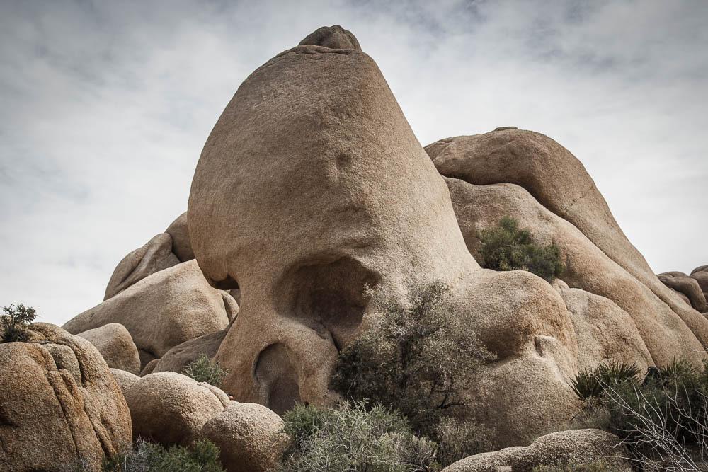 Skull Rock im Joshua Tree National Park
