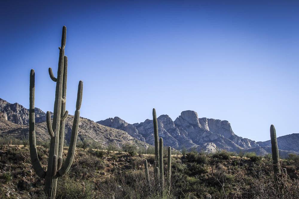 Aussicht auf die Berge beim Wandern im Catalina State Park