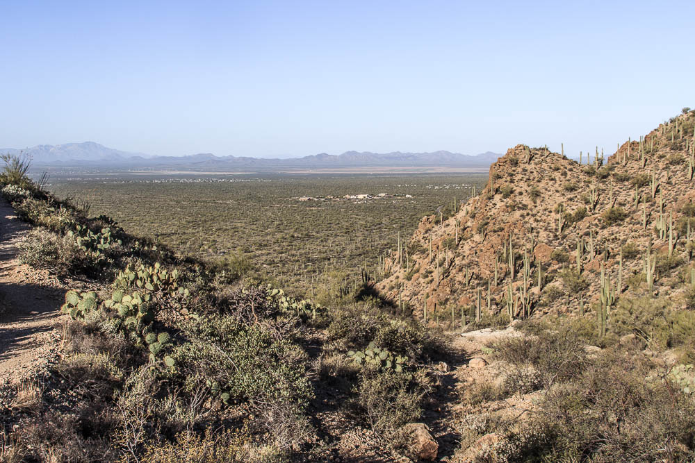 Blick vom Gates Pass auf den Saguaro National Park