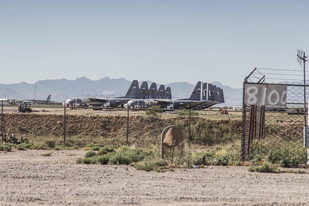 Roadtrip USA – Tag 18: Im Saguaro National Park