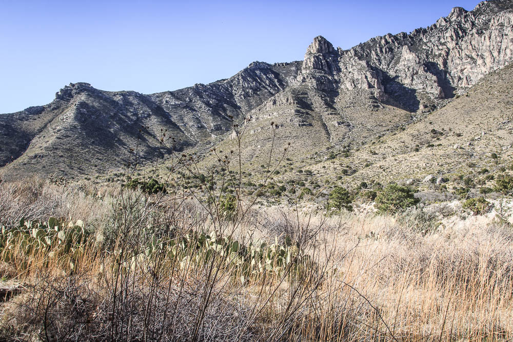 Im Guadalupe Mountains National Park. Bildrechte: Christian Volk