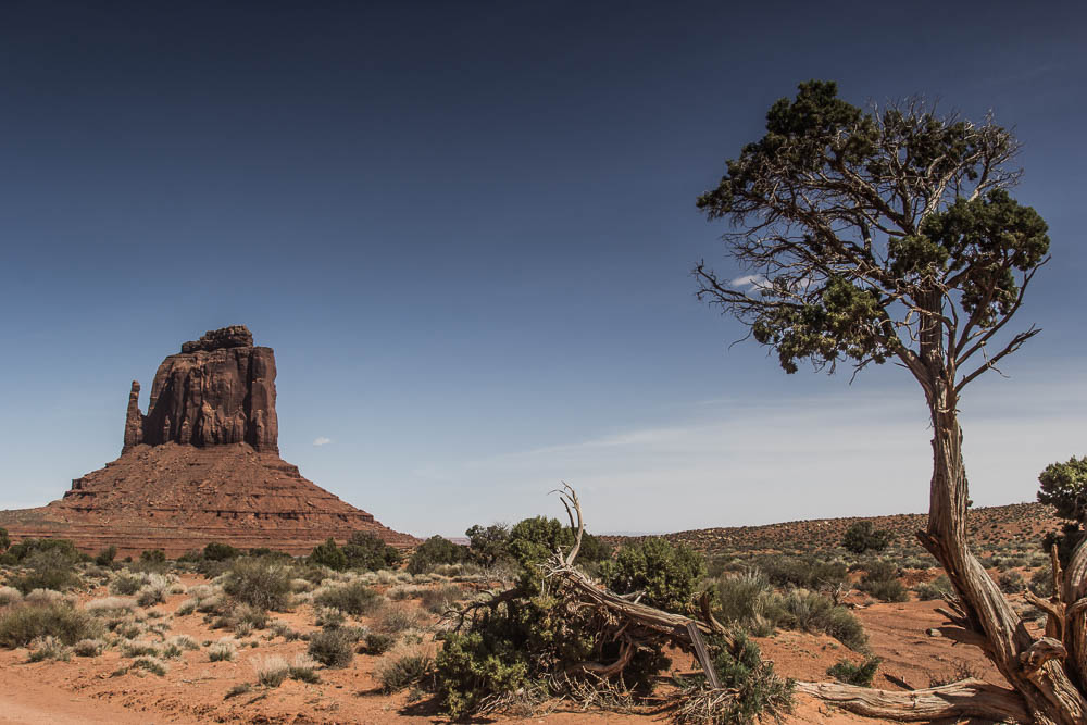 Roadtrip USA – Tag 35: Wandern im Monument Valley