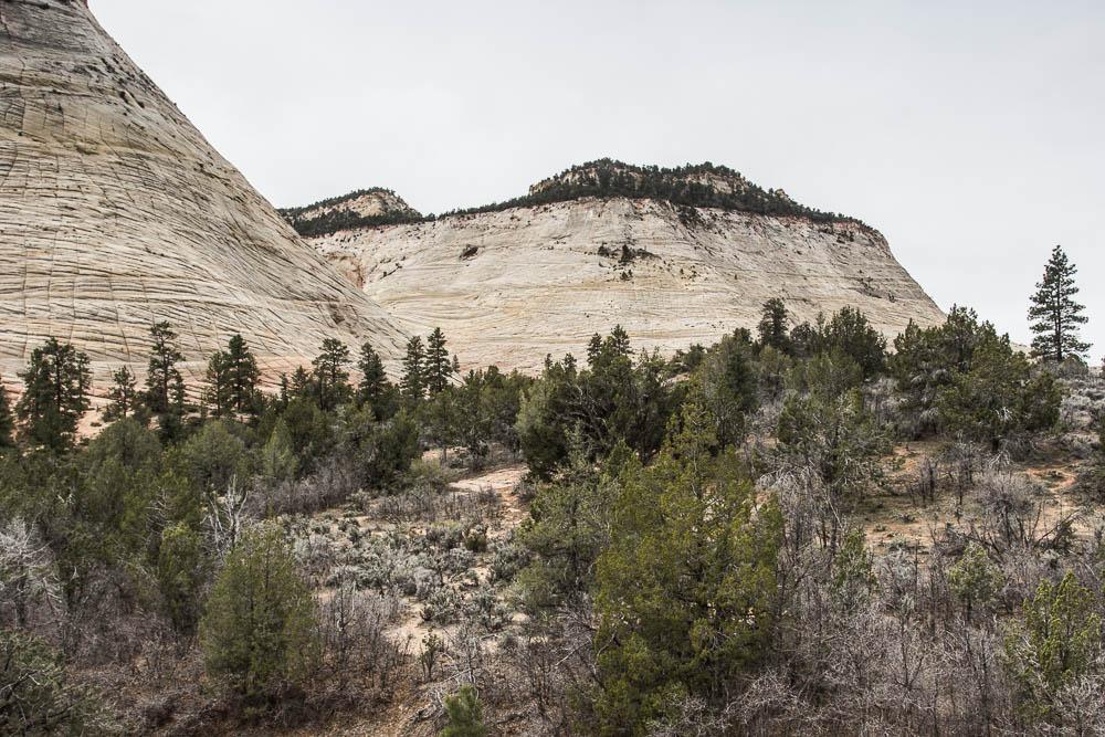 Unser erstes Foto im Zion National Park