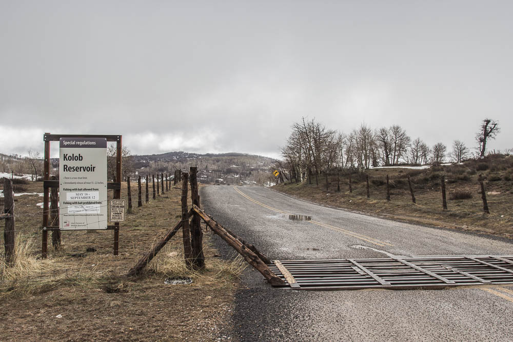 Straße zum Kolob Reservoir