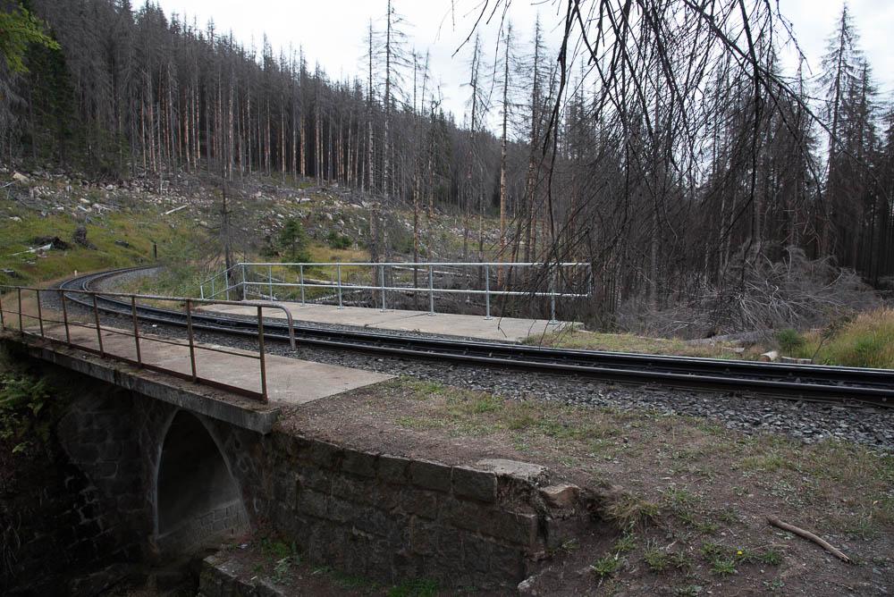 Der Wanderweg kreuzt die Brockenbahn.