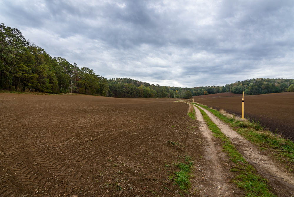 Feldweg unter wolkenverhangenem Himmel in Richtung Kutschenberg