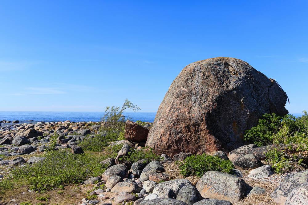 Felsen im Lahemaa Nationalpark