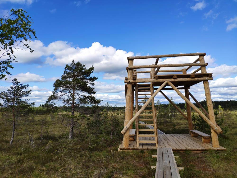 Aussichtsturm im Soomaa Nationalpark