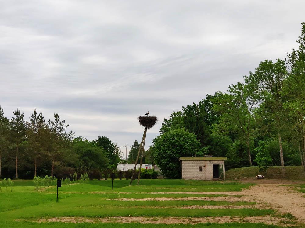 Storchennest mit Storch am Emistu Puhkeküla