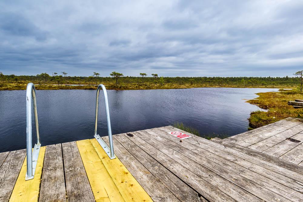 Badesteg im Sooma Nationalpark in Estland