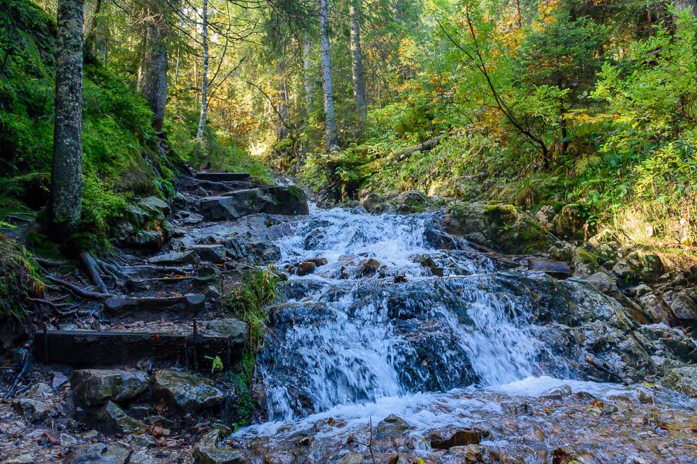 Steinere Stufen am Sagebachschlag-Steig
