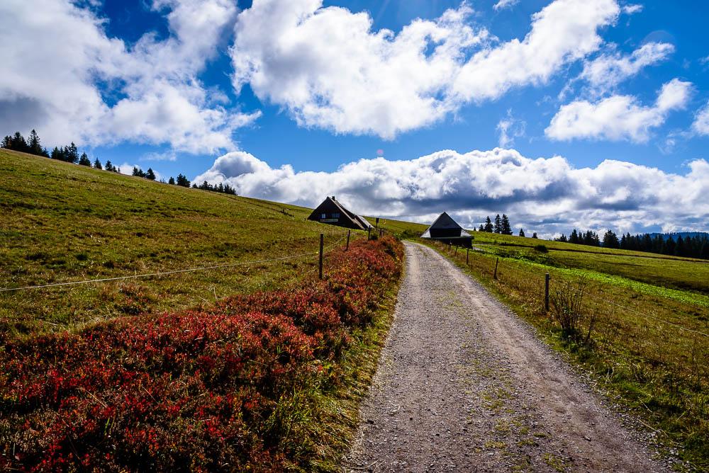 Weg zur Sankt Wilhelmer Hütte