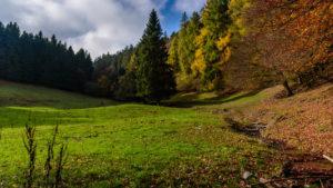 Projekt 16 Summits: Langenberg, der höchste Berg in Nordrhein-Westfalen