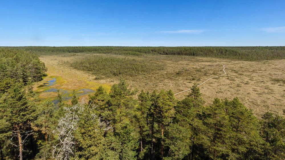 Unsere Top 3 Liste der Sehenswürdigkeiten in Estland