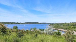 Wandern in Sachsen-Anhalt: Wir umrunden in 12 Kilometern den Großkaynaer See