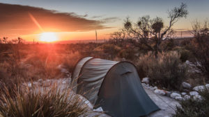 Pine Springs Campground – Erfahrungsbericht