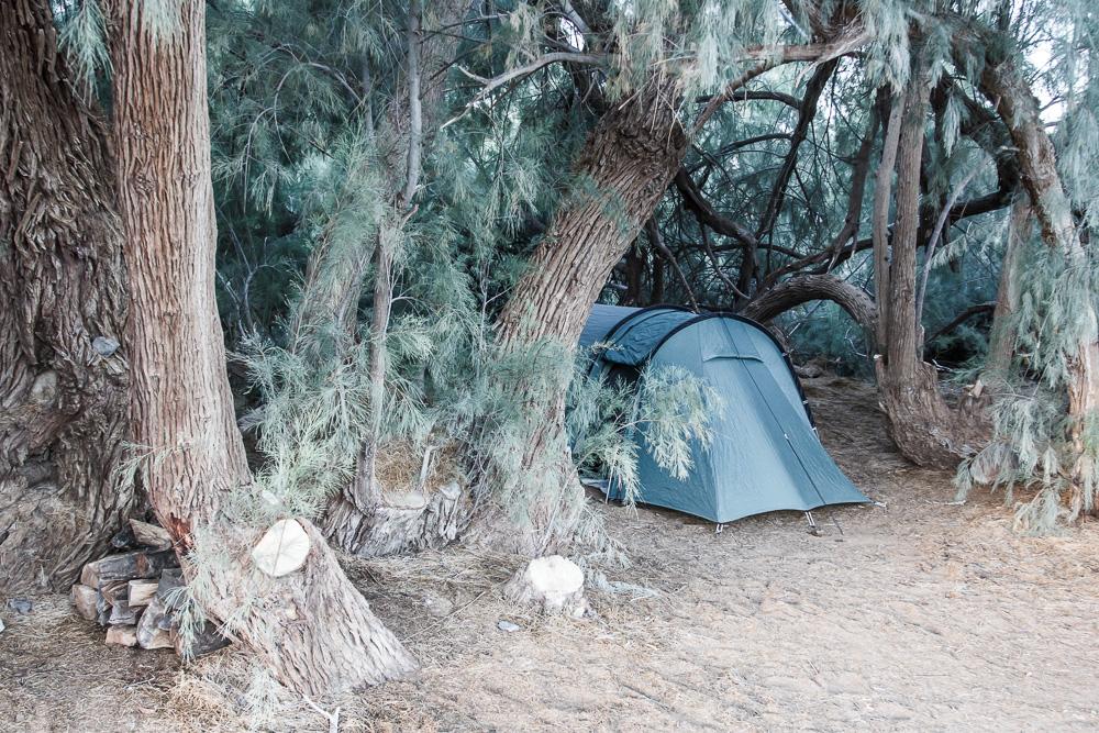 Tentsite unter dem Schatten der Bäume mit Tunnelzelt im Furnace Creek Campground mitten im Death Valley National Park.