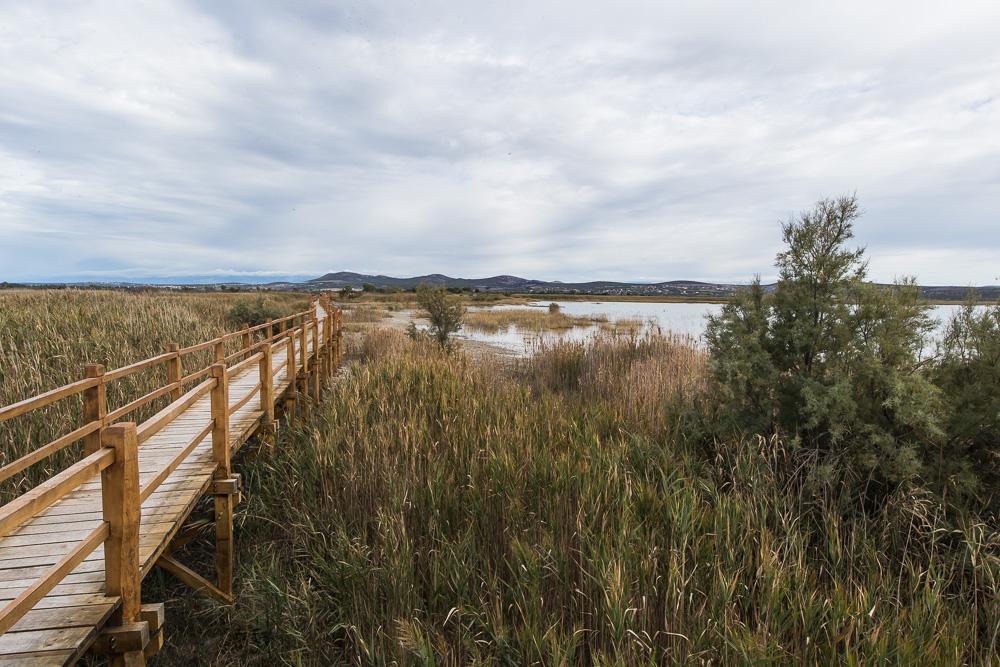Holzbrücke und Steg in einem Naturschutzgebiet bei Pirovac. Dem Park prirode vransko jezero.