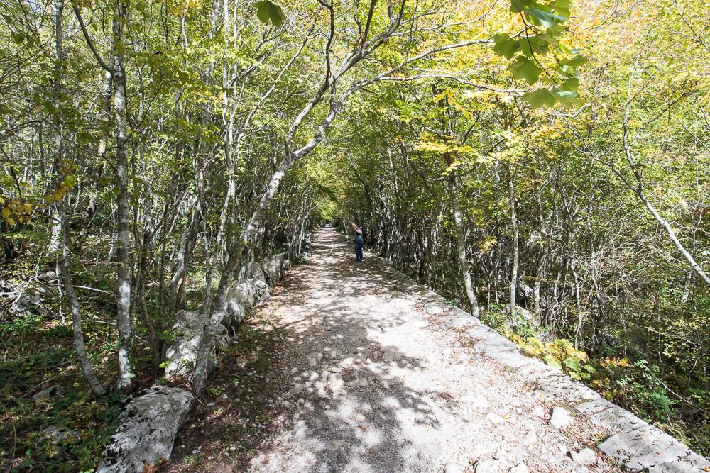 Nachdem der steile Aufstieg geschafft war, wurde der Wanderweg breiter und komfortabler