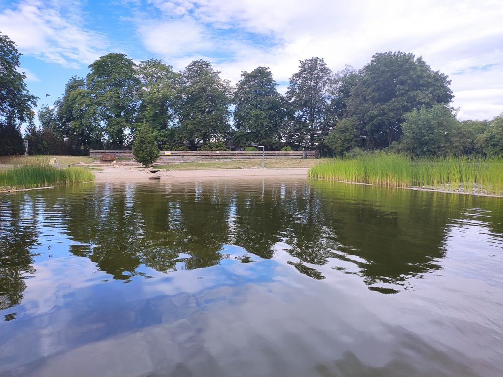 Blick vom Steg über den Nichtschwimmerbereich im Ökobad Lindenthal. Im Hintergrund die Liegeflächen sowie die Kiesfilteranlage.