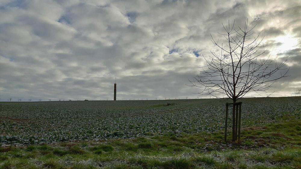 Ausflugstipp Sachsen: Aussichtsturm Böhrigen