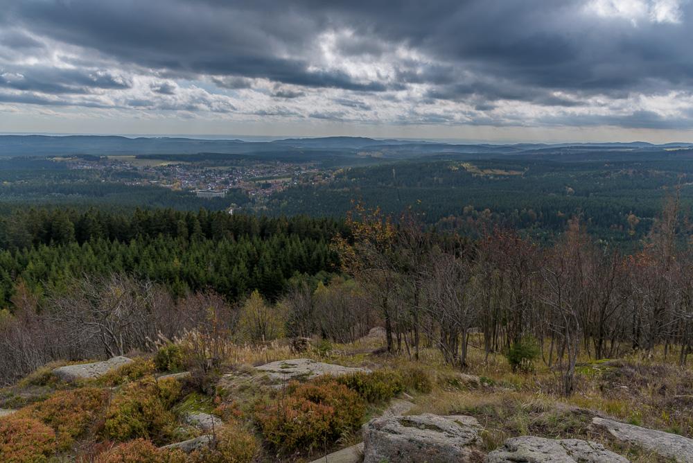 Blick von der Großen Wurmbergklippe hinunter auf viel Wald am Wurmberg