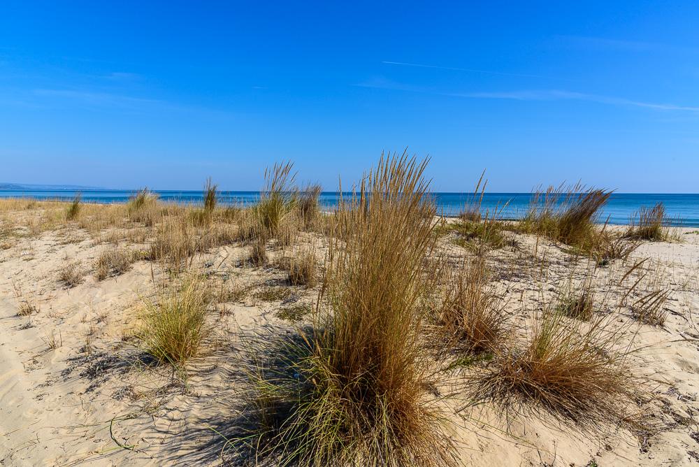 Blick auf das Schwarze Meer von den Dünen aus