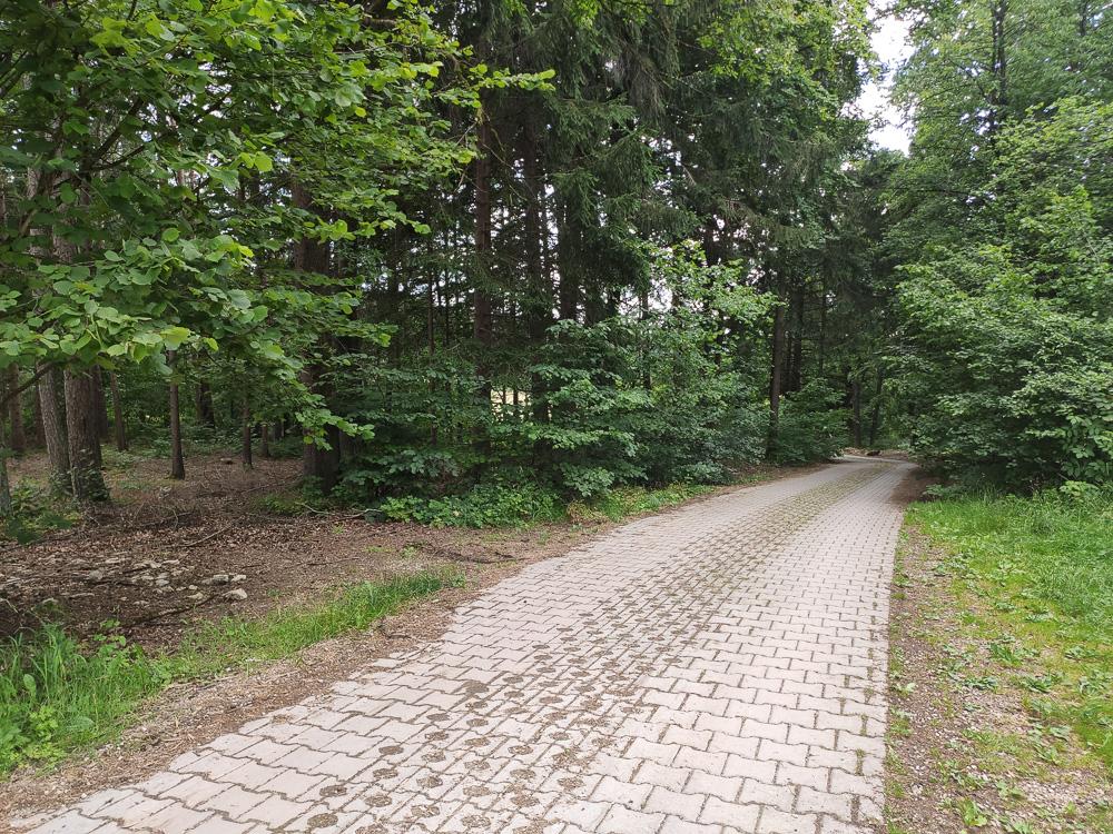 Zufahrtsweg zum Kemitzenstein