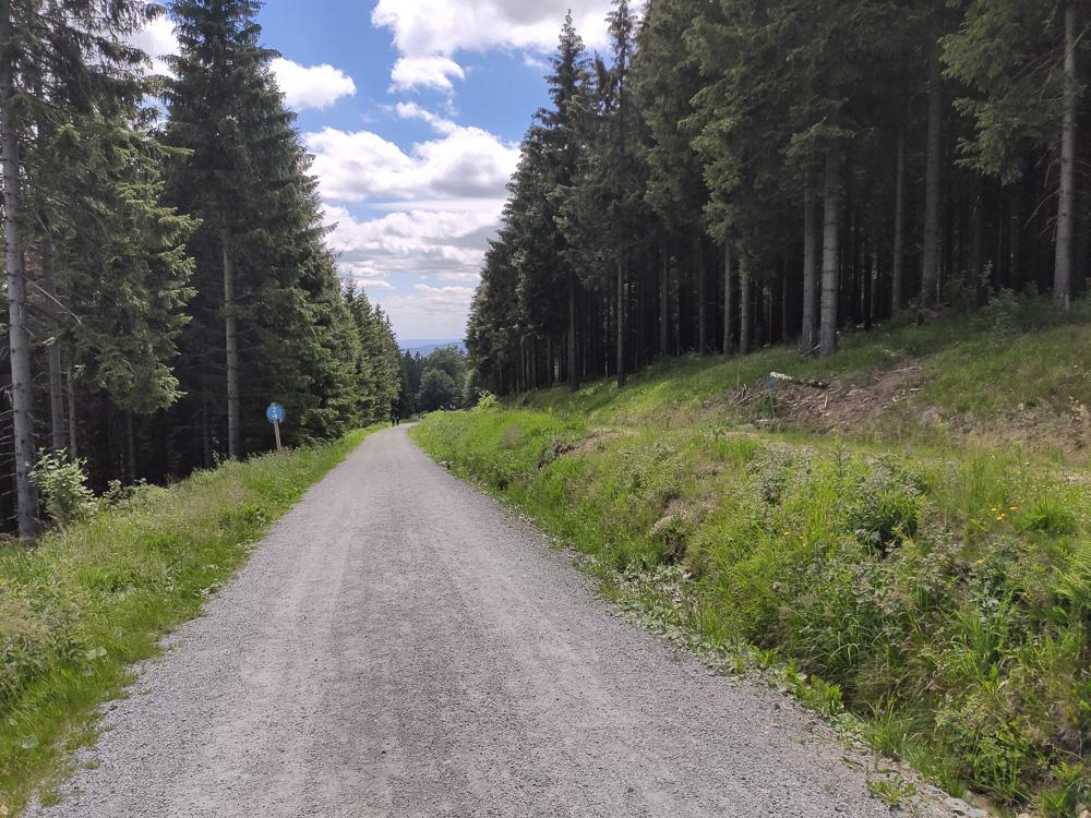 Breite Wander- und Radwege am Wurmberg in Richtung Braunlage
