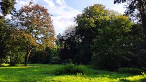 Projekt 16 Summits: Friedehorstpark, höchste natürliche Erhebung in Bremen