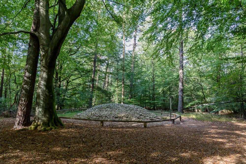 Die Hügelgräber am Archäologischen Wanderpfad