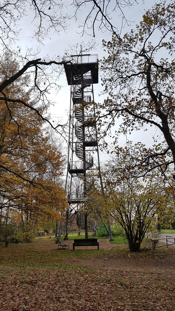 Der 29 Meter hohe Aussichtsturm Alberthöhe im Herbst