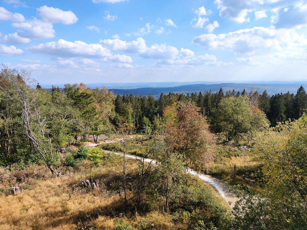 Blick vom hölzernen Aussichtsturm auf dem Erbeskopf in Richtung Süden