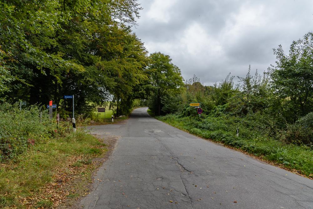 Nach links geht es auf den Forstweg zum Bungsberg