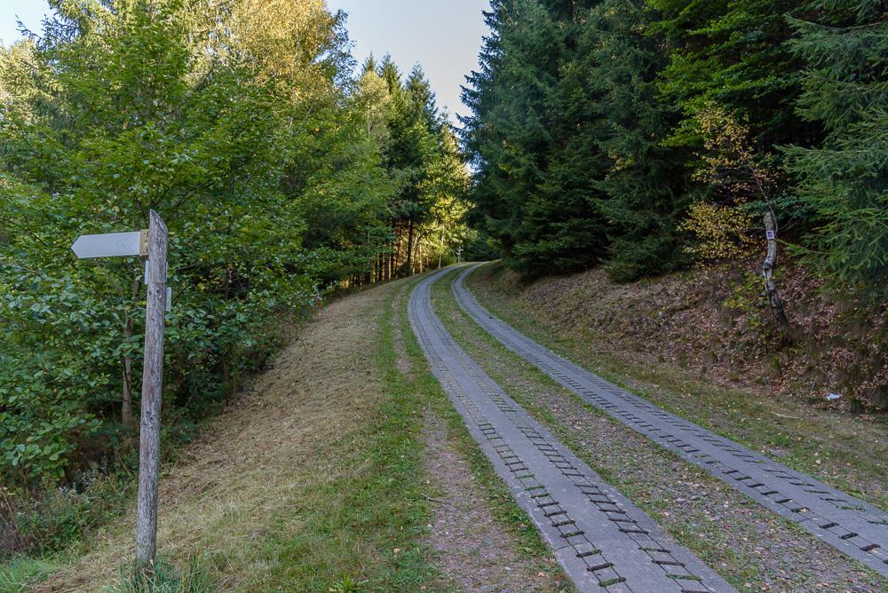 Kurzer, dafür steiler Anstieg hinauf zur Forststraße, welcher wir entlang der Talsperre Nonnweiler folgen werden