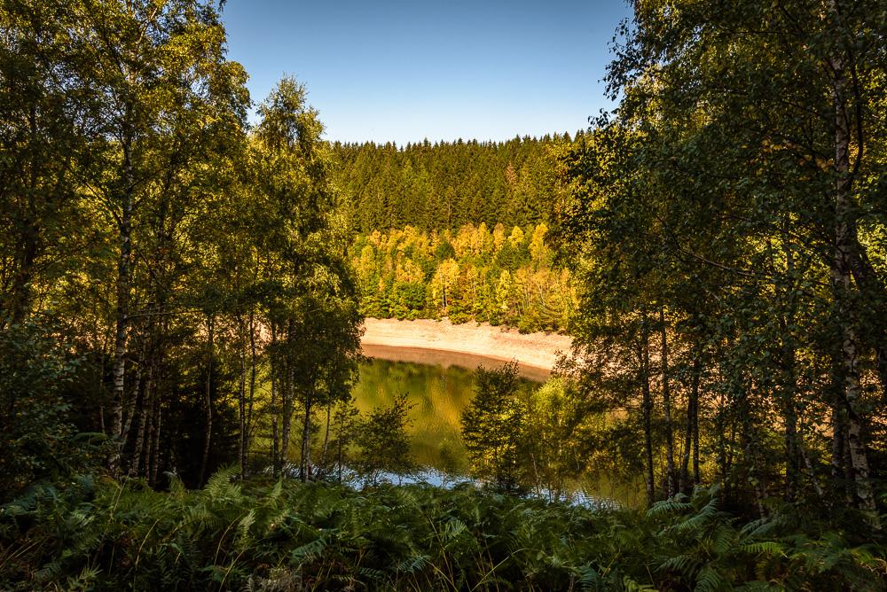 Immer wieder tun sich Lücken in den Bäumen auf und man hat einen Blick hinab auf die Talsperre sowie das gegenüberliegende Ufer