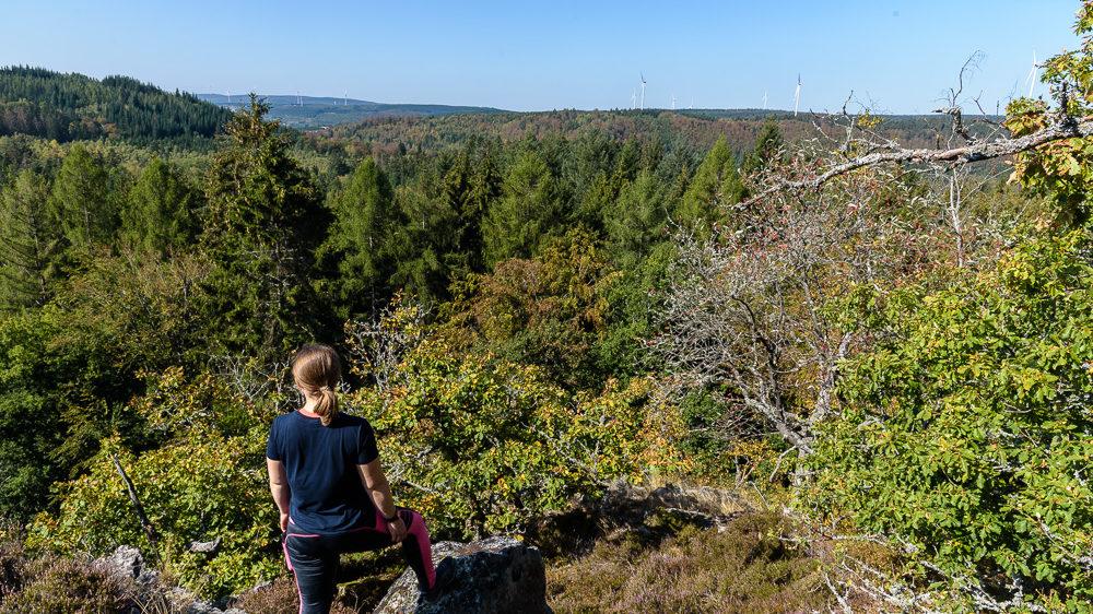 Ausflugstipp Saarland / Rheinland-Pfalz: Wanderung der 11,2 Kilometer langen Dollbergschleife