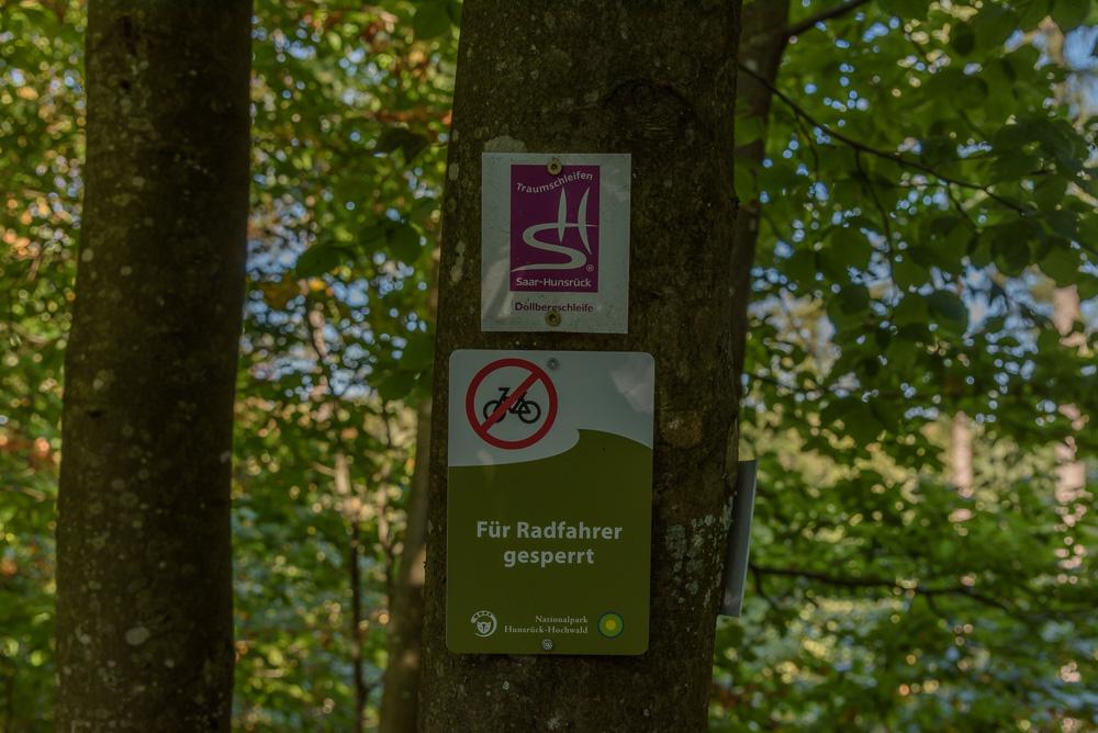 Wir folgen den kleinen Schildern entlang der Dollbergschleife. Die Wege sind nicht immer für Fahrräder geeignet.
