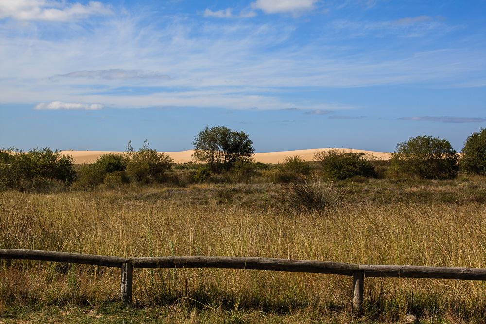 An den Dünen von Corrubedo