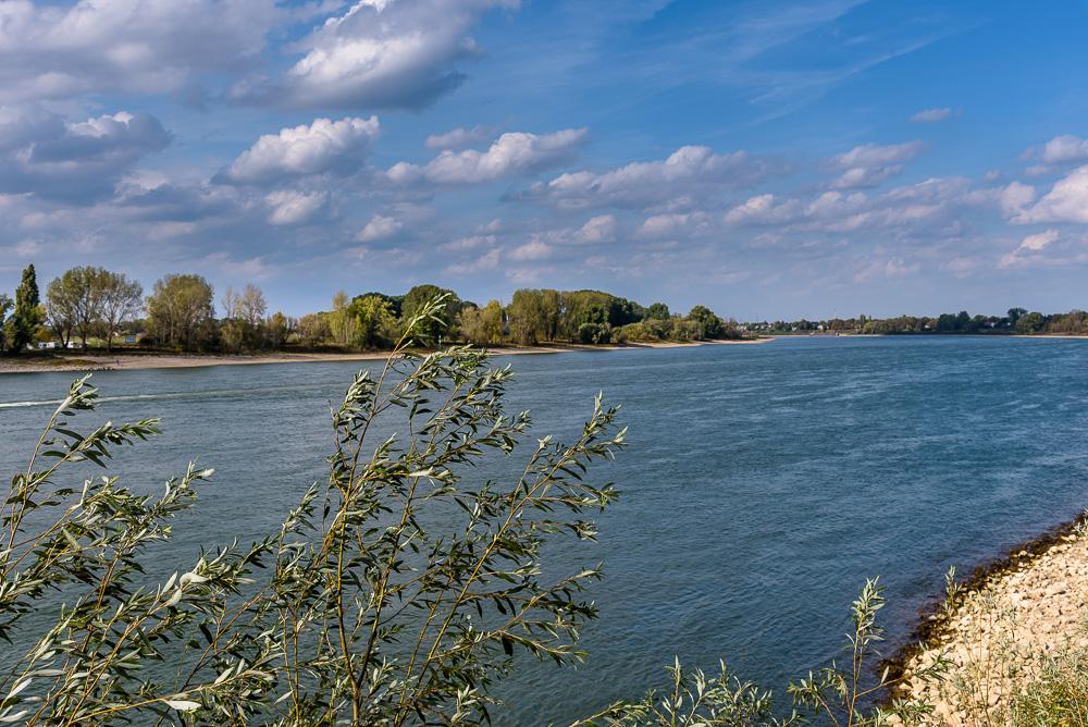 Beim Spaziergang durch Kaiserswerth kommen wir auch am Rheinufer vorbei