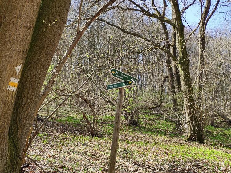 Die Wege im Naturschutzgebiet Alter Gleisberg sind mit Wegweisern versehen, sodass man sich nicht verlaufen kann