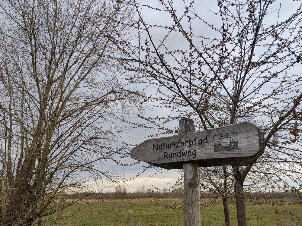 Wegweiser am Naturlehrpfad am Grabschützer See