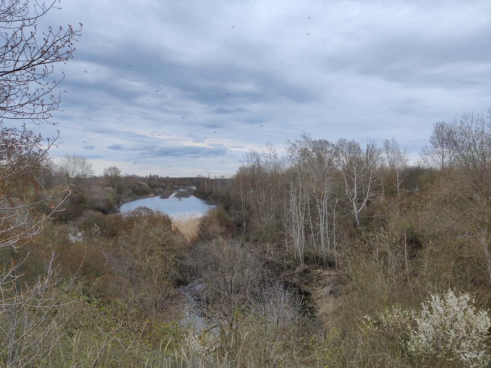 An dieser Stelle muss noch einiges geflutet werden, ehe der Grabschützer See vollständig die Landschaft bedeckt.