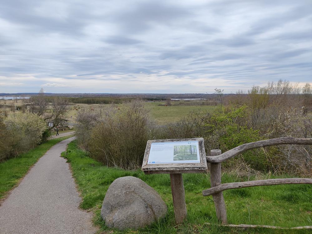 Der Aussichtspunkt am Naturlehrpfadrund um den Grabschützer See