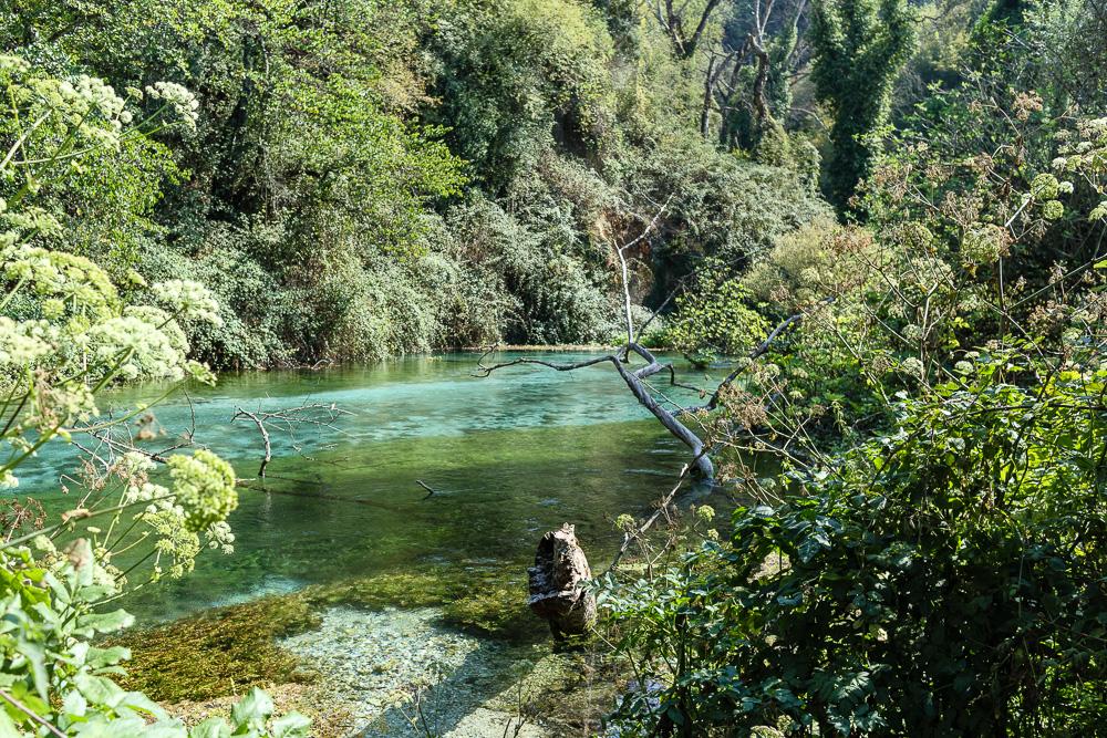 Besonders gut gefallen haben uns die Farbverläufe des Flusses und das viele Grün entlang des Ufers am The Blue Eye