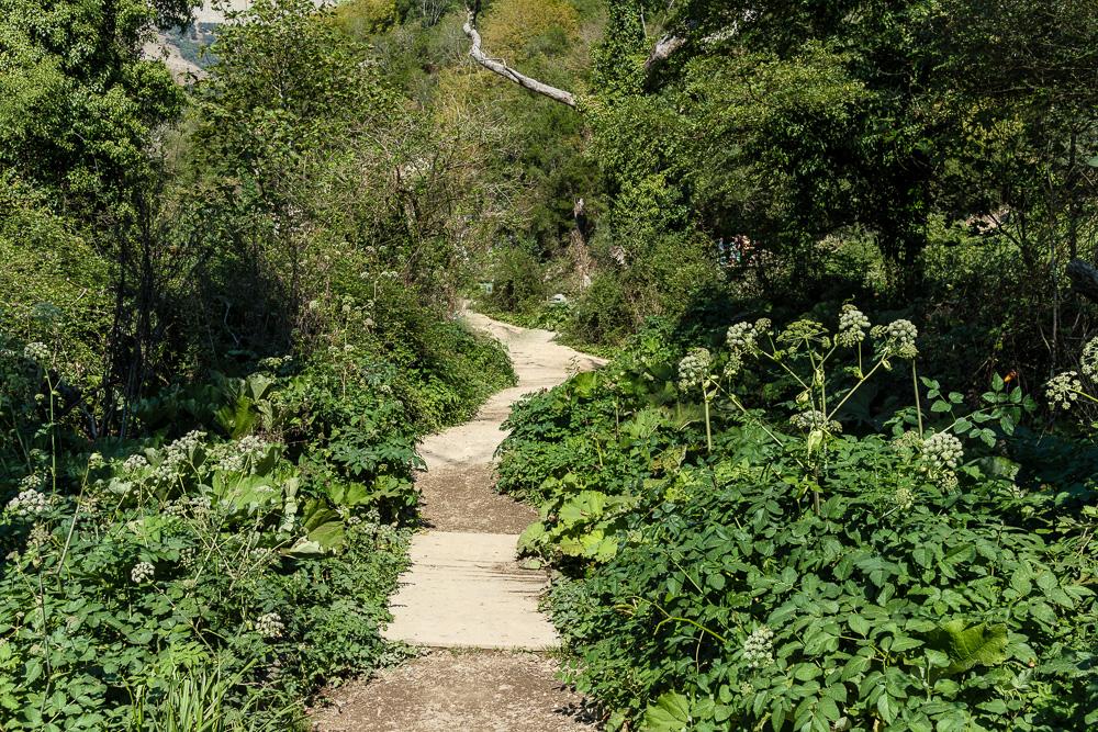 So schön grün war es am Blue Eye und die Wege waren für albanische Verhältnisse sehr sauber