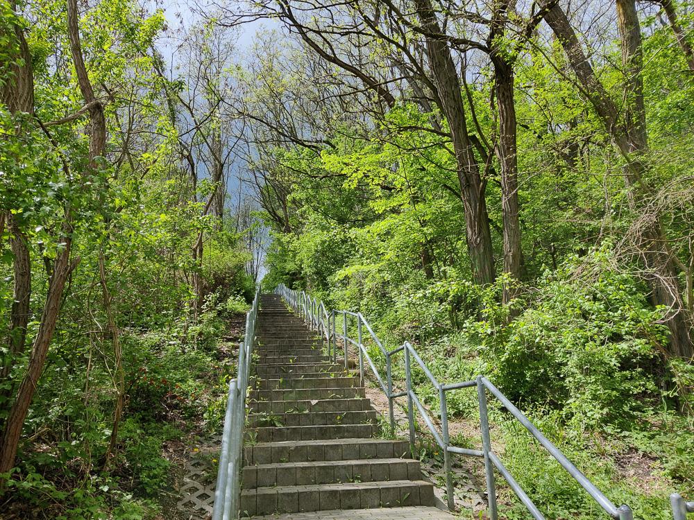 Über diese Treppen machten wir einige Höhenmeter gut auf dem Weg hinauf auf den Bitterfelder Berg