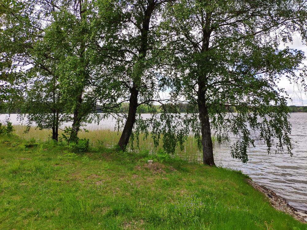 Am Ufer des Sees Beržoras