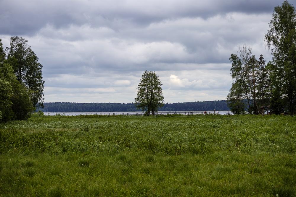 Blick auf einen Teil des Wanderweges Šeirė am See Plateliai